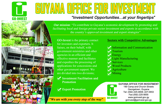 Guyana GoInvest Artwork